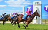 Melbourne Cup and Wodonga Gold Cup Holiday
