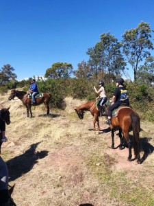 Camps2021-Horse-Riding00003